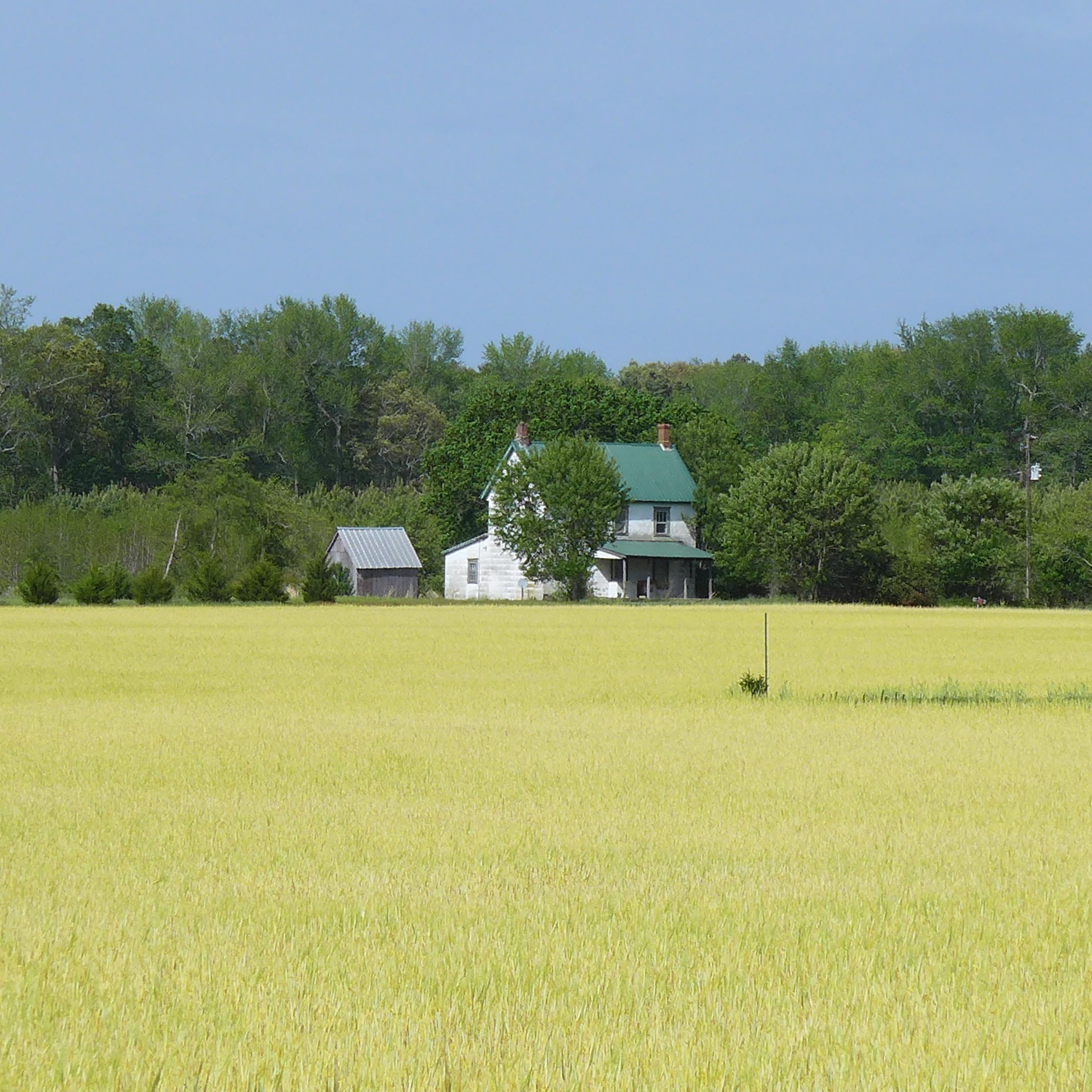 RuralDelaware