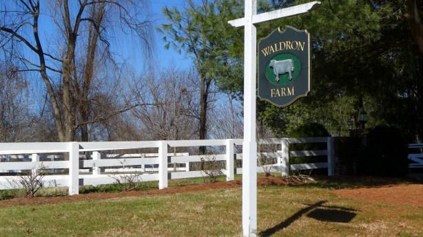 Charlottesville area 050