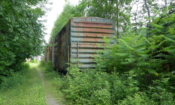 bike path on abandoned rail line in New Hampshire